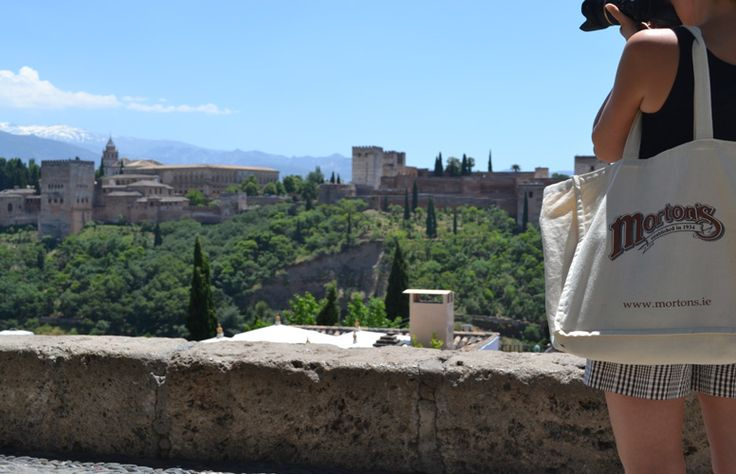 We love this picture! Bright sun of Andalusia and snow on the mountain tops  of Sierra Nevada. It must be Granada with the beautiful Alhambra! Picture taken from the Albacin.