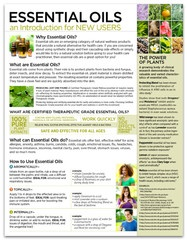 Essential Oils an Introduction for New Users Tear Pad - A great introduction to essential oils! Outline based on a doTERRA Diamond's favorite class. Use this sheet as a class or a handout. Only at ShareOils.com / doTERRA compliant.