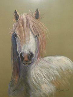 """""""El Pony galés"""" Admiro a los animales, sobre todo perro, gatos y caballos. Cuadro pintado al Pastel por Chari González"""