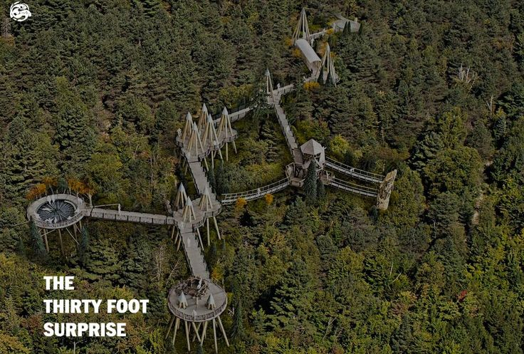 A new wooden walkway in New York's Adirondack Mountains takes nature lovers on a tour of the treetops to let them experience the forest from the perspective of the birds and beasts that live there.