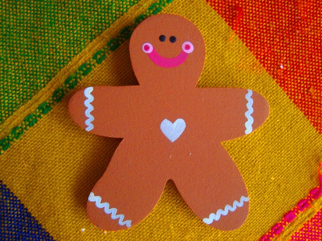 Ginger / Magnets