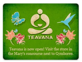 Teavanna is now open! Visit the store in the Macy's concourse next to Gymboree.