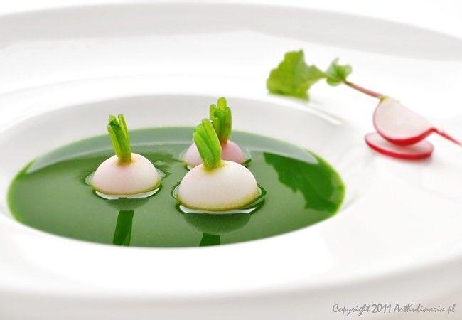 Zupa z wiosennej rzodkiewki / Radish soup