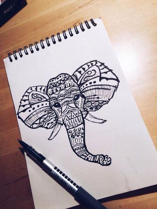 Elephant head drawing