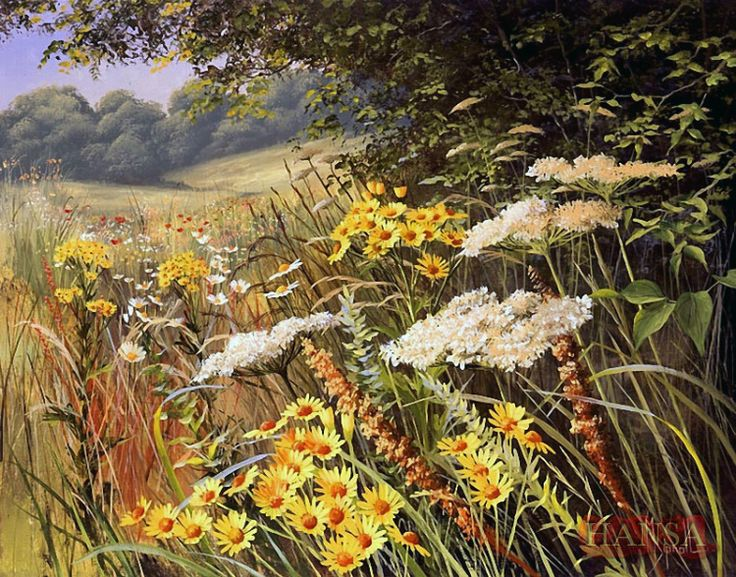 Mary Dipnall