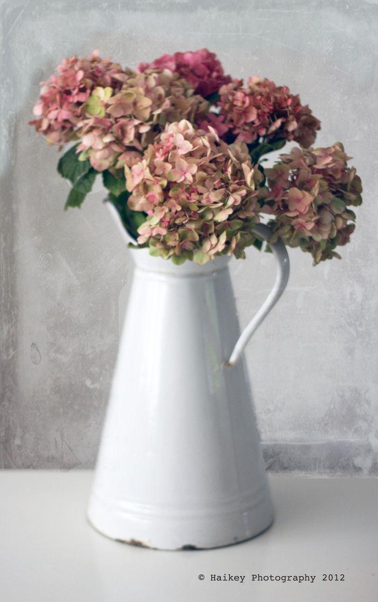 les 19 meilleures images du tableau fleurs s ch es sur pinterest fleurs s ch es bouquets de. Black Bedroom Furniture Sets. Home Design Ideas