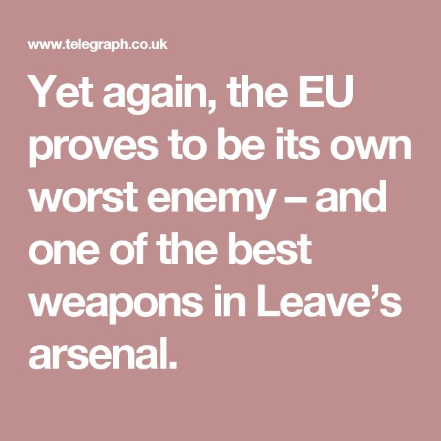 Yet again, the EU proves to be its own worst enemy – and one of the best weapons in Leave's arsenal.