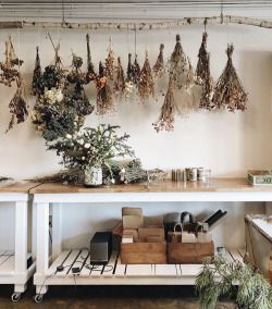 I love the dried flowers.  Would use this idea for drying my herbs.