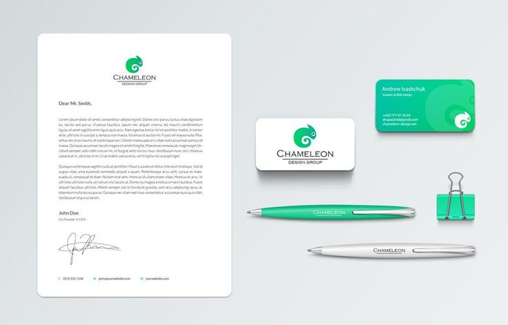 #Branding - Chameleon Design Group #design #graphicdesign #portfolio