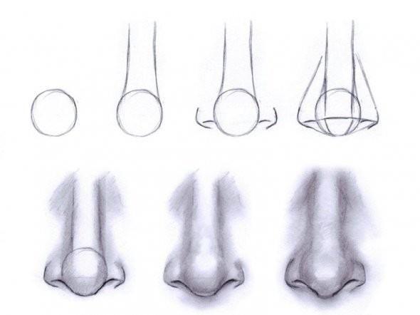 como desenhar: nariz