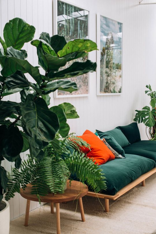 Un salon très végétal, canapé vert et plantes vertes | living room, Green sofa and plants #architectureintérieure #interiordesign #décoration