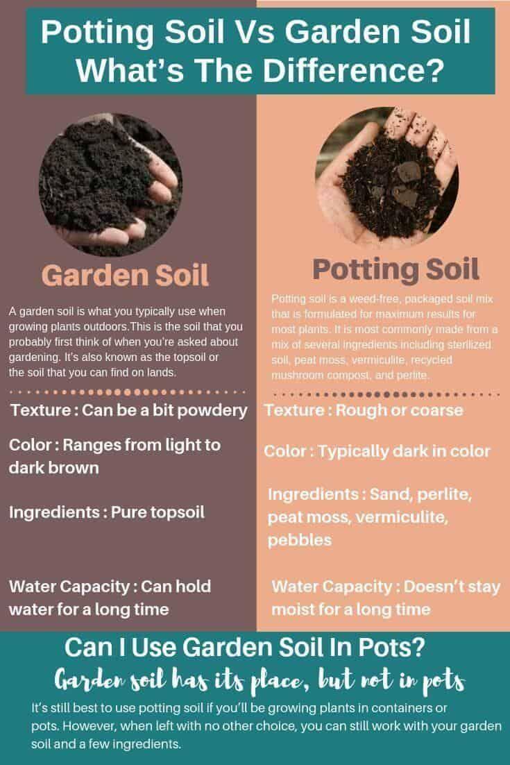 Pin On Best Vegetable Gardening
