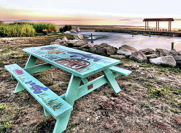 Plymouth, MA Supports The Arts   Handpainted Picnic Table By Artist Robin  Block   Photo