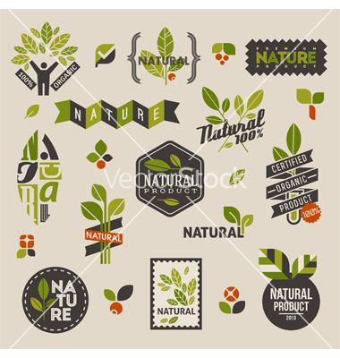 Nature labels and emblems with green leaves vector 1216168 - by ussr on VectorStock®