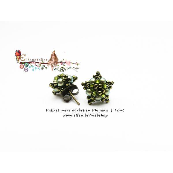 Pakket mini oorbellen : Phiyada