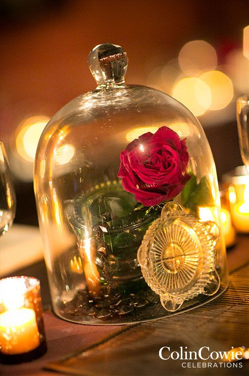 17 best images about bell jars touched by time vintage for Bell jar ideas