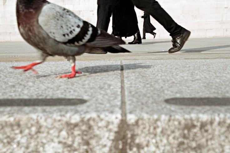 10 street photographers en activo que hay que conocer | Quesabesde