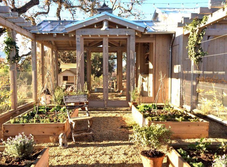 patina farm: in the vegetable garden…