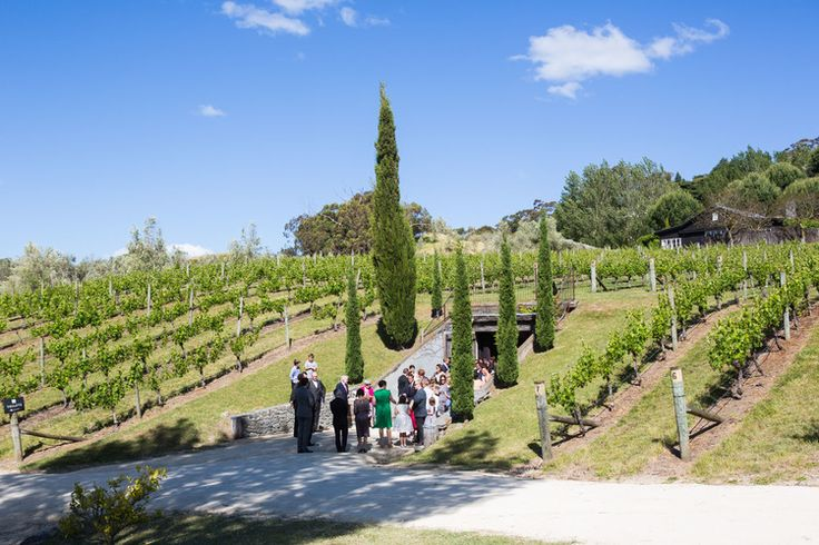 amazing wedding venues black barn winery underground cellar