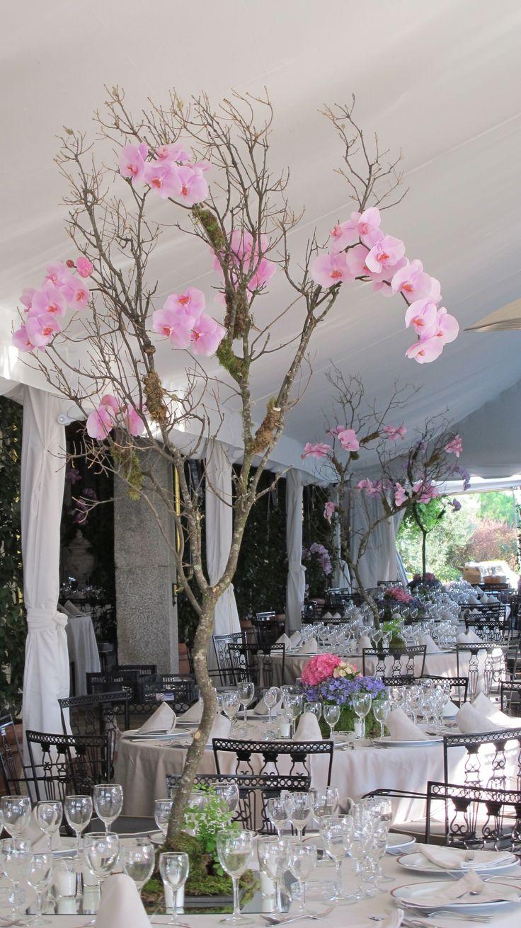 centro de mesa rama con orquideas by eAquilea