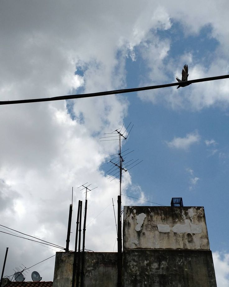 Serán las antenas del Chapulin? #antena #sky #ciel #cielo #clouds #nuages #beautiful #instapic #nofilter #bird #dove #paloma #contrastes #celeste #lightblue #structure #weekend #urban #urbanjungle...