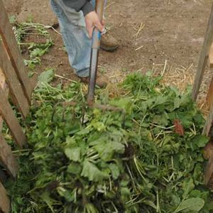 how to create compost: You don't need a compost bin to make compost. You simply need a pile that is at least 3 by 3 by 3 feet.