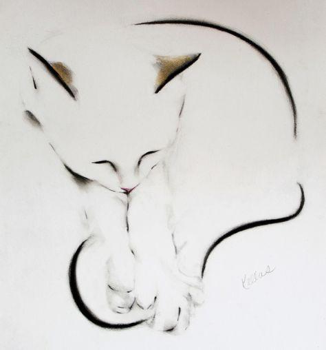 Cats — Kellas Campbell Art