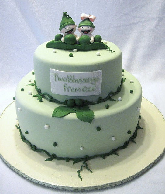 66 Best Birthday Cakes For Twins Images On Pinterest