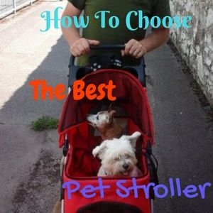 How to choose the best pet stroller
