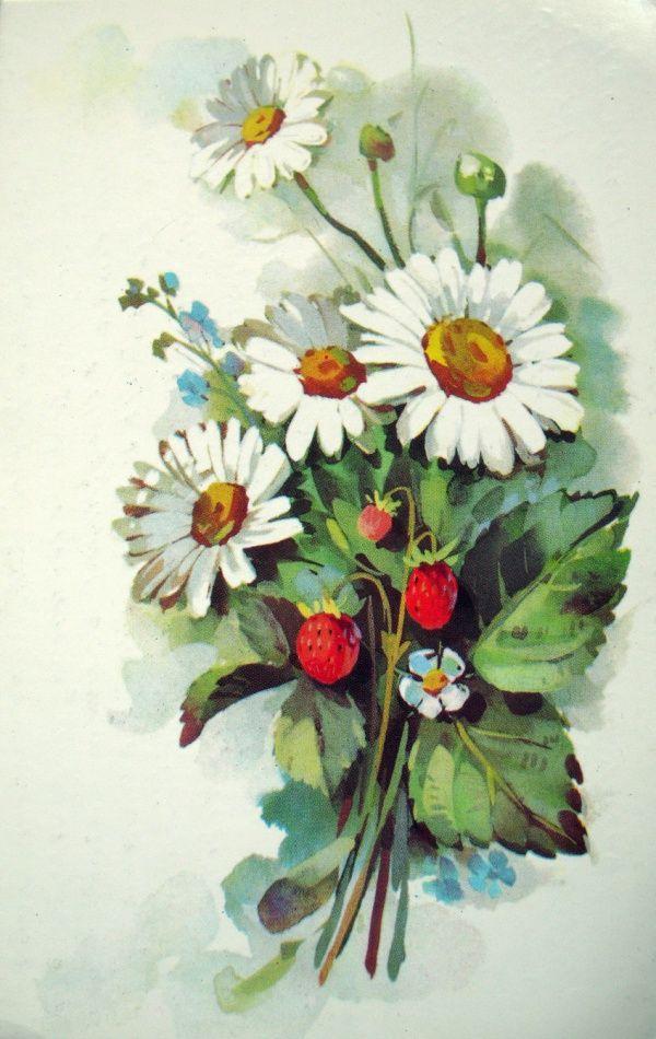 Картинки композиции цветов ромашки нарисованные, оригинальные