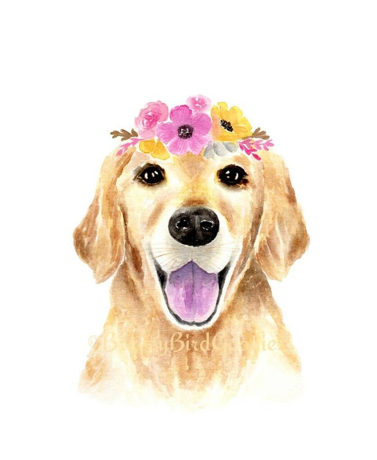 Golden Retriever With Pink Flower Crown Print Watercolour