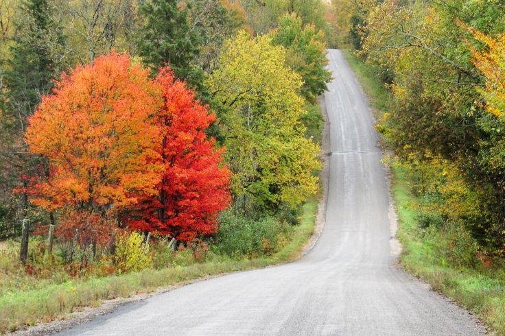 Woodcox Road in the Fall.  Bancroft area. Photo: L. Thomson.