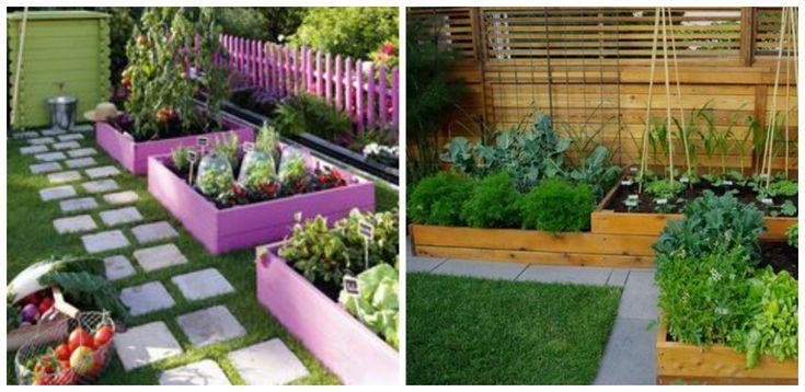 Cultivarea legumelor in ladite de lemn. Este aceasta o solutie eficienta a nevoii de spatiu dintr-o gradina? Aflam mai multe detalii din acest articol
