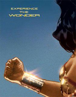 The Bracelet: Woman Movie, Comic Experiment, Superhero Originals Posters, Wonder Women, Dc Comic, Wonder Woman, Adam Hughes, Wonder Superhero