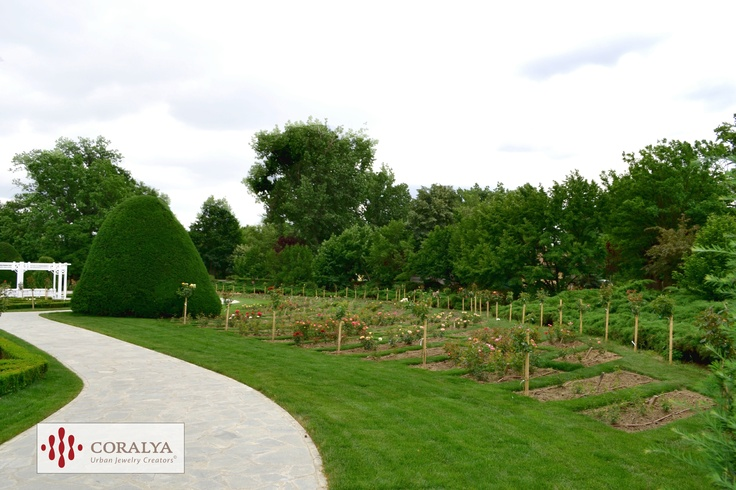 Parcul Rozelor din Timisoara - Promenada de weekend