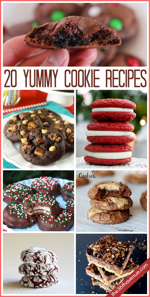 20 Delicious Cookie Recipes… Nothing like a homemade treat!  Pin it now and bake them later! #cookies #recipes