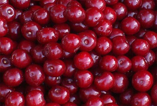 Отвар из плодоножек вишни хорошее мочегонное средство при отеках, водянке