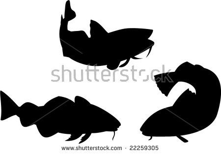 Cod fish collection  #codfish #silhouette #illustration