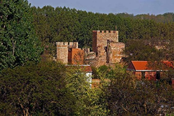 Vista del Castillo de Alija del Infantado.