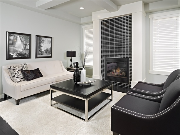 Homes By Avi - Fireplace tile, black & white