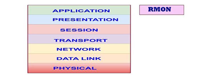 Remote Monitoring MIBs (RMON1, RMON2)