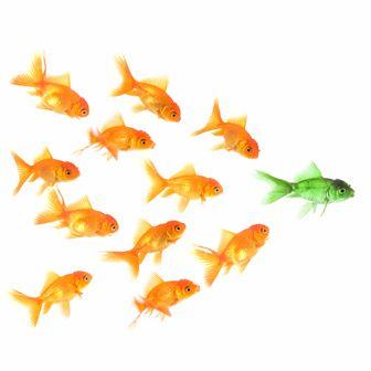 How to Create a Leadership Development Program