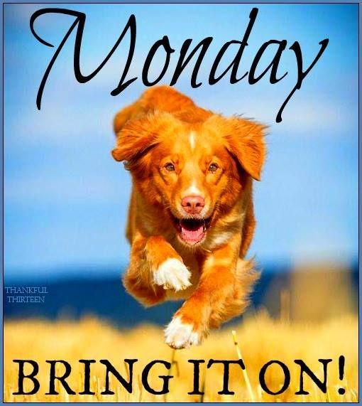 Happy Monday! ❤️/Thank You A, Me trouble? Nooooo ha ha x
