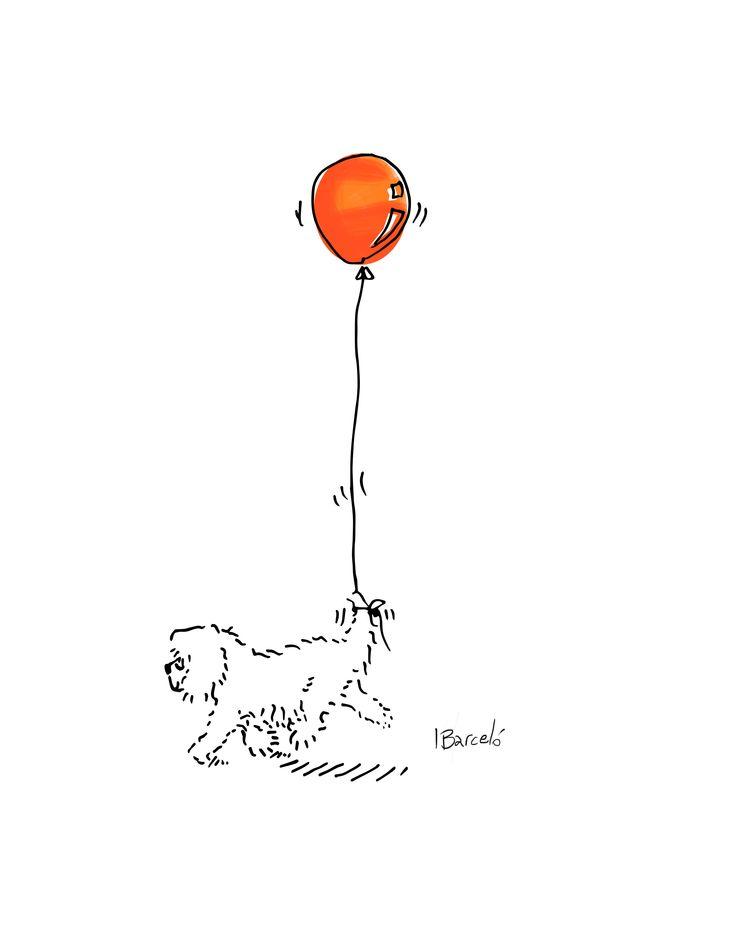 Balloon Coton de Tulear - Ignacio Barcelo