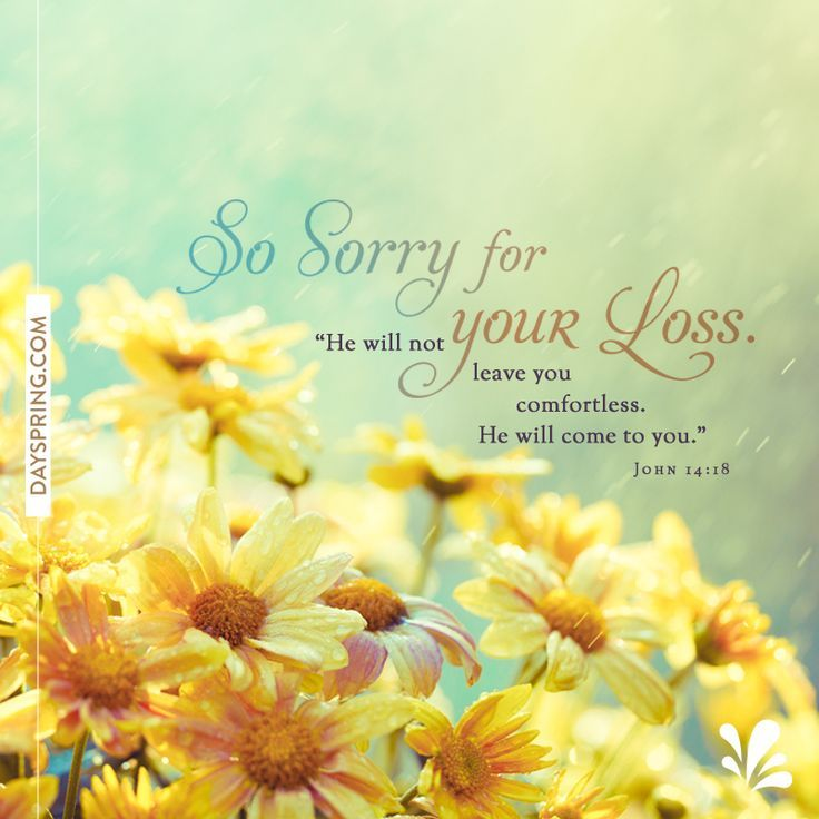 View Source Image Sympathy Quotes Words Of Sympathy Condolence