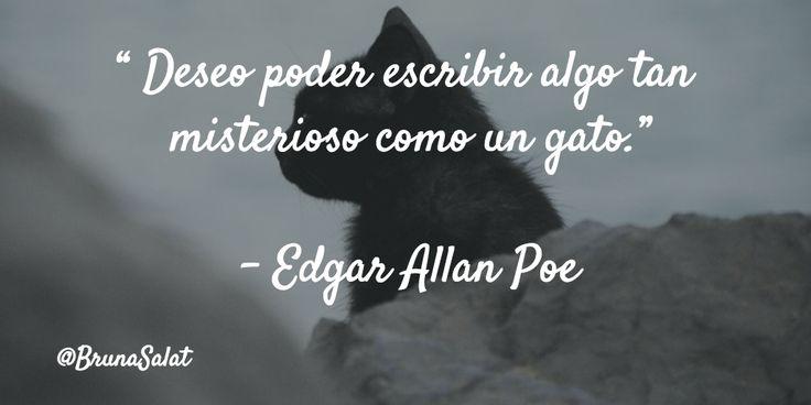 """"""" Deseo poder escribir algo tan misterioso como un gato.""""   – Edgar Allan Poe"""