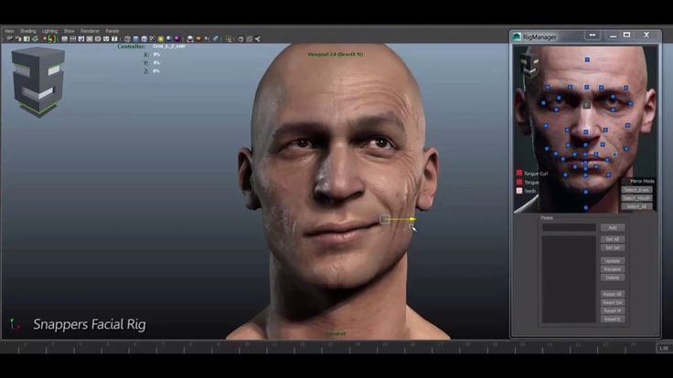 3D Facial Rig Manager for Maya & 3ds Max by Snappers Systems - Character Rigging Demo Reel on Vimeo
