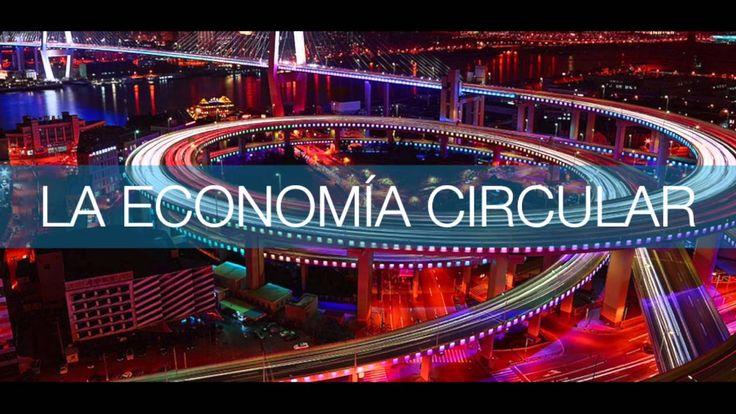 La economia circular y el pais de la abundancia   Federico Apestegui   T...