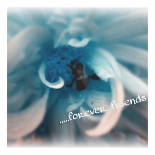 """Canvas Wall Art """"Forever Friends"""""""