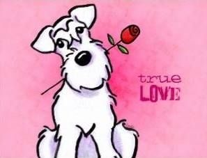 Schnauzer love <3 Very true!!!